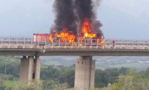 Bus a fuoco su viadotto A24, tutti salvi