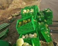 Rubano camion e gettano per strada le casse di ortaggi