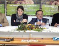 Agroalimenta nel segno dello spumante d'Abruzzo
