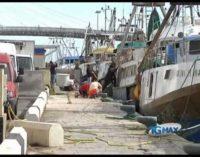Dalla Regione fondi per la marineria pescarese