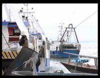 Porto canale, il Comune accelera le procedure