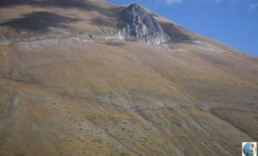 Terremoto, ecco lo scalino lungo 15 km tra Arquata e Ussita