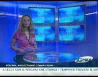 TGMAX del 21 giugno 2011