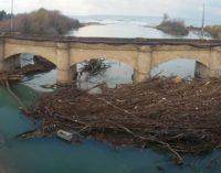 """<div class=""""dashicons dashicons-camera""""></div>Fossacesia: via i tronchi dalle arcate del ponte sul fiume Sangro, domani i lavori"""
