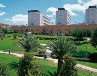 """<div class=""""dashicons dashicons-camera""""></div>Violenza sessuale: arrestato studente universitario a Chieti"""