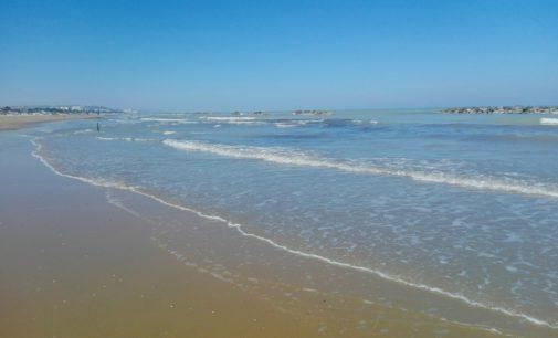 """<div class=""""dashicons dashicons-camera""""></div>Mare balneabile a Pescara, valori conformi anche su via Balilla"""