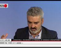 """<div class=""""dashicons dashicons-video-alt3""""></div>Cinghiali, incidenti stradali e sindaci esasperati Il Punto"""