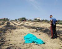 """<div class=""""dashicons dashicons-camera""""></div>Tragedia a Sant'Omero, donna di 79 anni è morta avvolta dalle fiamme nel campo vicino casa"""
