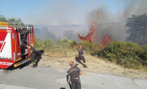 """<div class=""""dashicons dashicons-camera""""></div>Quattro giorni di fuoco e fiamme a Schiavi d'Abruzzo"""