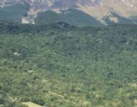 """<div class=""""dashicons dashicons-camera""""></div>Rigopiano, tornano le fiamme sul Monte Siella"""