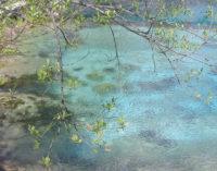 """<div class=""""dashicons dashicons-camera""""></div>Escursione alla sorgente Del Verde di Fara San Martino con il Fai e la Sasi"""