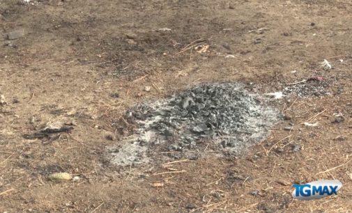 Incendio nella riserva naturale Santa Filomena, a fuoco tende abusive di stranieri espulsi