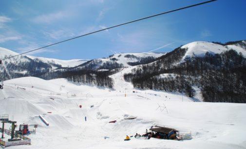 Campo Felice: sbatte contro un albero, muore sciatore