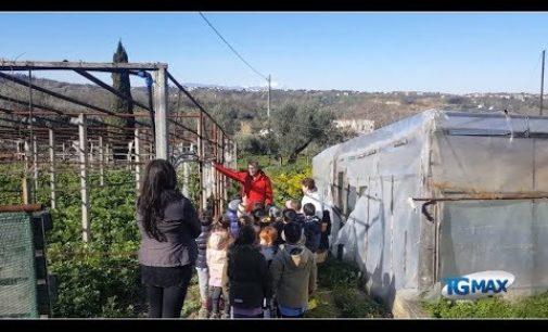 Lanciano: a scuola negli orti di Sant'Egidio
