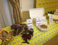 L'Abruzzo dei prodotti tipici a Palazzo Rospigliosi a Roma, c'è anche il peperone dolce di Altino