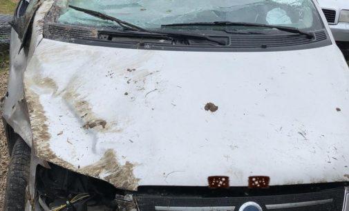 Auto si ribalta: feriti 3 ventenni, ragazza di Montazzoli in prognosi riservata
