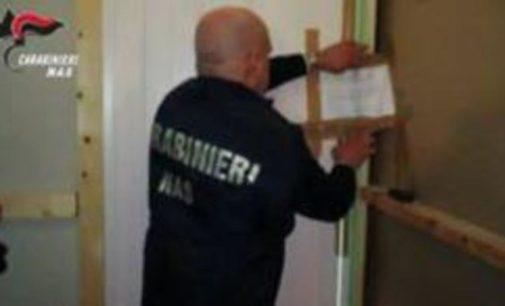 Falso dentista offriva cure itineranti ma senza qualifica: denunciato dai carabinieri