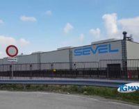 Neve: sospesa la produzione in Sevel, autobus fermi