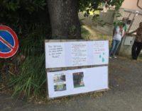 Pescara: 560 firme per salvare due querce secolari in via delle Fornaci, ultimi lembi del paesaggio agreste