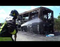 Autobus a fuoco, Tua annuncia controlli straordinari sui mezzi della flotta