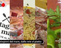 Il Punto Le Stagioni del Mare, dalla rete al piatto: le ricette dell'Estate