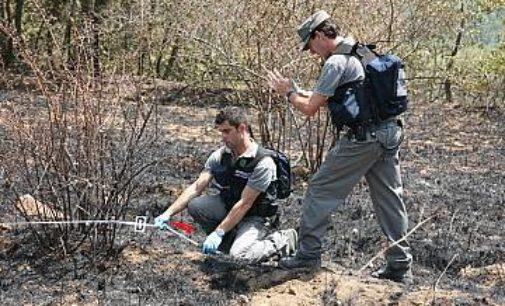 Carpineto Sinello: individuato e denunciato il responsabile dell'incendio di 69 ettari di bosco e terreni seminativi