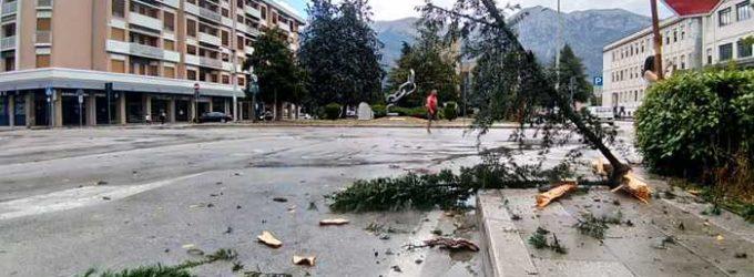 Sulmona: fulmine colpisce e spezza grosso albero in piazza Capograssi
