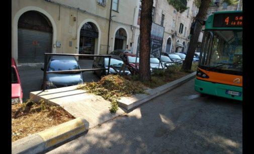 Tpl Lanciano: lo sfalcio dell'erba occupa la piattaforma disabili