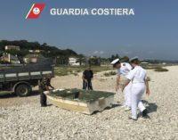 Costa dei trabocchi: rimosse imbarcazioni abbandonate o depositate abusivamente