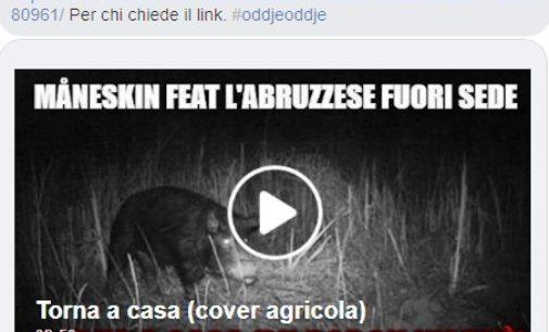 "Lu porch n'arvè, il video parodia in dialetto abruzzese di ""Torna a casa"" dei Maneskin spopola sul web"
