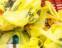 Colletta alimentare: abruzzesi dal cuore d'oro, donati 398 mila pasti