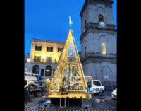 Lanciano: l'albero di Natale è pronto, domani pomeriggio l'accensione in piazza Plebiscito