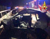 Incidente stradale con cinghiali, un morto sulla A1