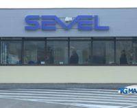 Sevel: i sindacati plaudono, adesso nuove assunzioni