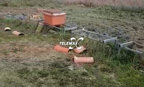 Atessa: rubati 28 alveari, l'appello degli apicoltori