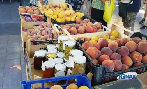 Spesa: l'Abruzzo è la regione più costosa d'Italia