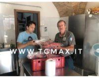 Cinghiali: la polizia provinciale di Teramo dona le carni alle mense dei poveri