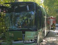 Incidente bus a Spoltore, da Tua un numero di telefono per istruire le pratiche assicurative dei feriti