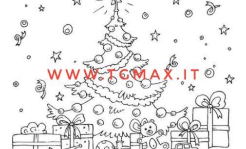 Lanciano, pubblicato il nuovo avviso per l'albero di Natale in piazza