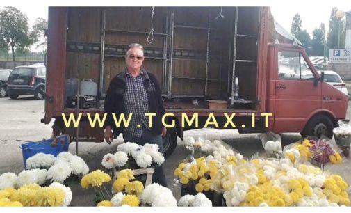 2 novembre: tempo di crisi anche per il crisantemo