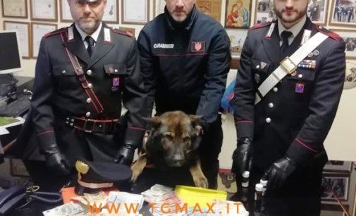 San Salvo: sorpreso con 400 dosi di eroina in casa, arrestato