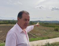 Amazon in Val di Sangro? Di Giuseppantonio: contatti nelle scorse settimane, ero pronto a modificare il Prg di Fossacesia