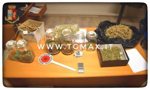 San Vito Chietino: aveva in casa un laboratorio di marijuana, un arresto alla Marina