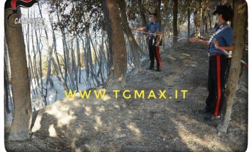 Ortona: individuato l'autore dell'incendio a Torre Pizzis, è un agricoltore